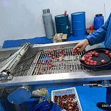 冻干糖葫芦裹糖机 全自动地瓜条裹糖机 导热油裹糖机;