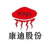北京康迪光電子股份有限公司;